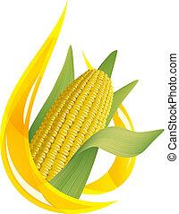 Corn oil. Stylized drop of oil, and corn cob.
