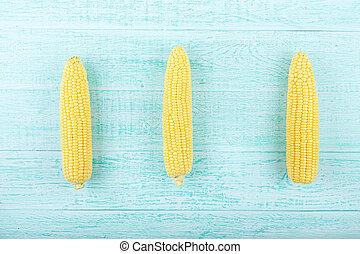 Corn on a blue background