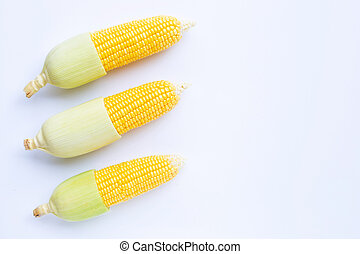 Corn on a white background.