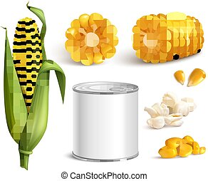 Corn Realistic Set