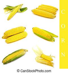 corn set