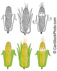Corn Vector Illustration