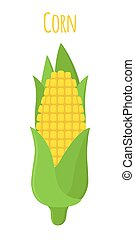 Corn, vegetarian food, healthy nutrition. Cartoon flat style. Vector illustration