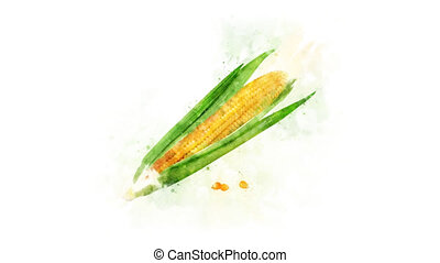Corn watercolor drawing animation - Corn watercolor picture...