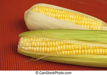 Corn with green leaf