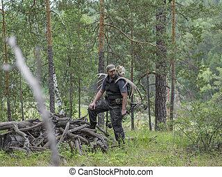cornamenta, alce, el suyo, cazador, paseos, venado, arco, ...
