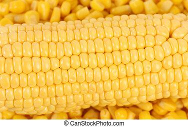 corncob., corn., doce, fundo, enlatado