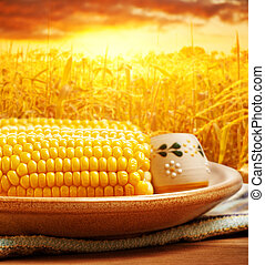 Corncob over sunset - Picture of tasty boiled corncob with...
