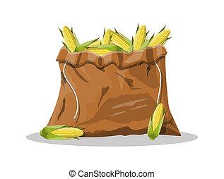 corncobs, milhos, verde, leaves., amarela