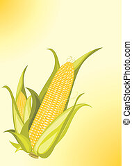 Corncobs on the yellow background