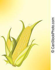 corncobs, op, de, gele achtergrond