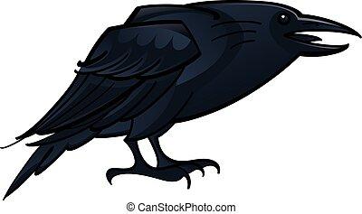 corneille, corbeau