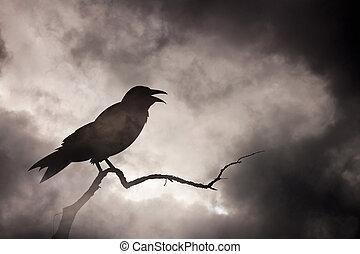 corneille, reposer, ou, branch., corbeau, arbre, stérile