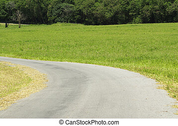 Corner road with green grass