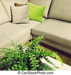 Corner sofa and fern plant decoration