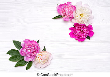 Corners of peonies flowers on a white wooden background. View from above.