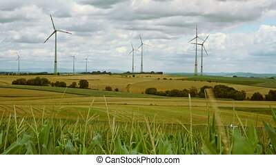 cornfield with windmills - cloudy sky with strong winds at...