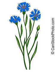 cornflower, flor, desenho, este prego