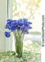 Cornflower flower in glass on windowsill