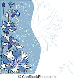 Cornflower. Vector greeting card.