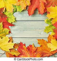 cornice, fatto, foglie, acero