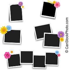 cornice foto, set, fiori, grande