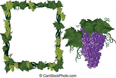 cornice, vite, uva