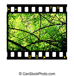 cornici, 35mm film
