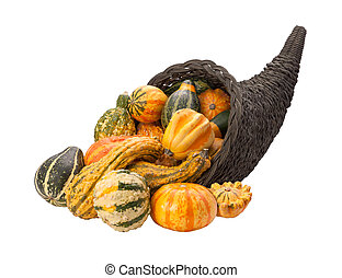 Cornucopia Gourds isolated with clipping path