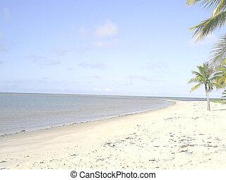 Coroa Vermelha Beach 3 - Coroa Vermelha Beach, Porto Seguro,...