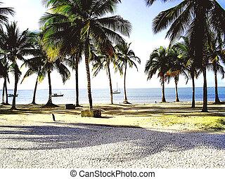 Coroa Vermelha Beach 7 - Coroa Vermelha Beach, Porto Seguro,...