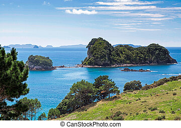 coromandel, coastline