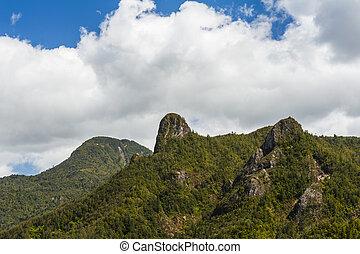 Coromandel Pinnacles in the North New Zealand - Coromandel ...