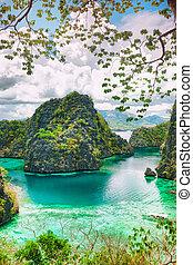 Coron lagoon