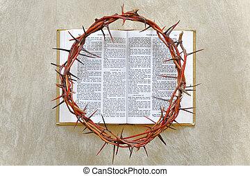 corona de espinas, en, el, biblia