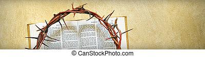 corona de espinas, en, un, biblia