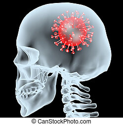 coronavirus disease COVID-19 virus infection in human brain