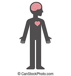 corpo, cuore, silhouette, cervello, umano, cartone animato