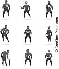 corpo, disegnato, raggi x, organo, icone