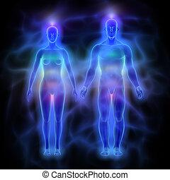 corpo, donna, (aura), energia, -, chakras, umano, uomo