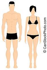 corpo, illustrazione uomo, donne