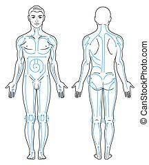 corpo, linee, massaggio, man.