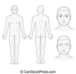 corpo, maschio, grafico, faccia