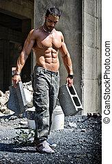 corpo, shirtless, lavoratore, muscolare, costruzione, sexy