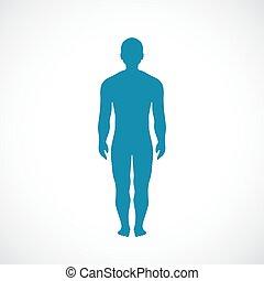 corpo, silhouette, umano, icona