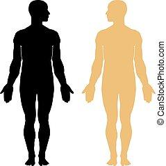 corpo, silhouette, uomo