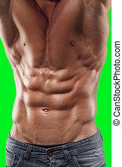 corpo, toned, su, atletico, shirtless, isolato, giovane guardare, fondo., verde, giù, chiudere, proposta, uomo