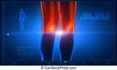 corpo umano, scansione, parte, 3