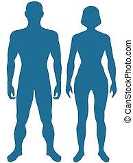 corpo, umano