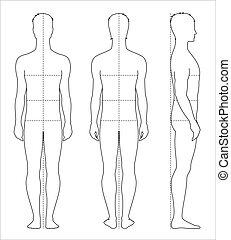 corpo, uomini, misure